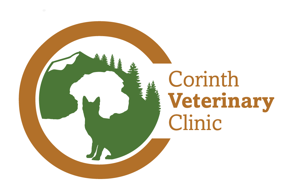 veterinarian logo design