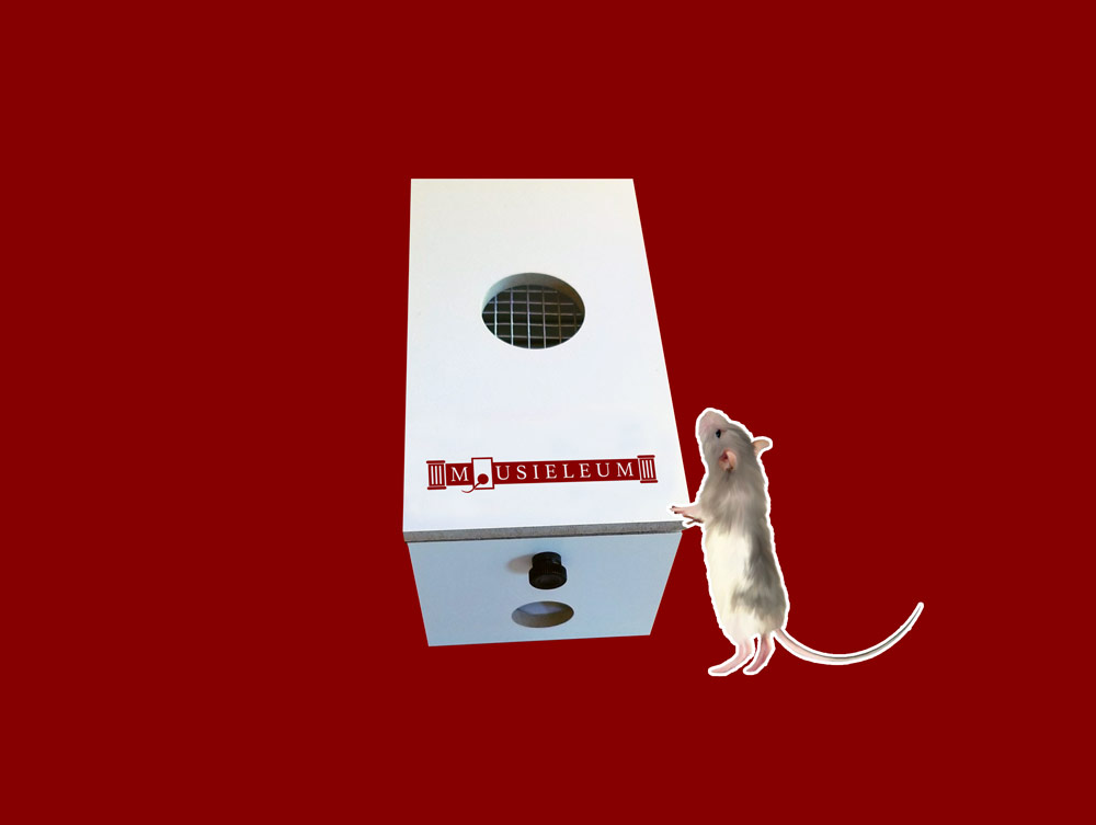 mouse trap housing logo design by mike hosier